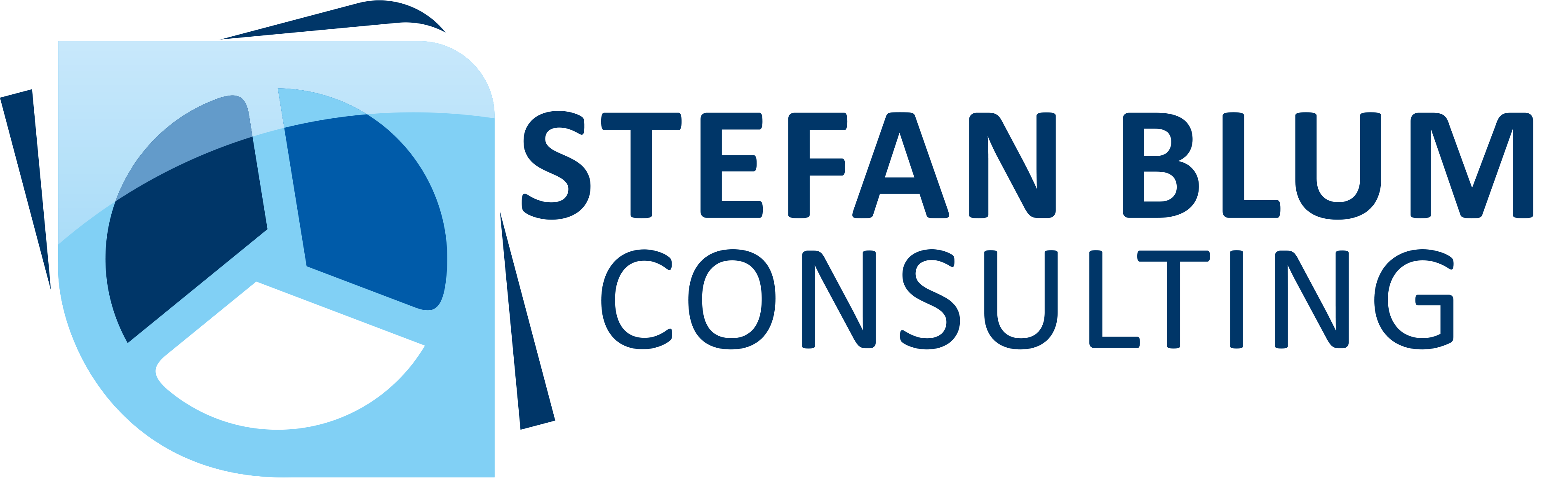 Stefan Blum Consulting